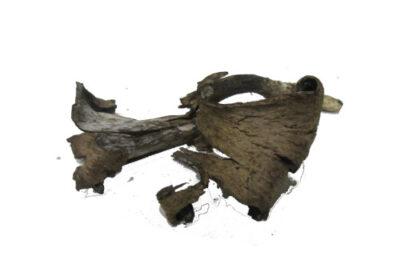 setas comestibles trompetas de la muerte Trompetas de la muerte (Craterellus cornucopioides) o trompeta de los muertos