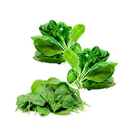 dos manojos de espinacas con hojas de espinacas sueltas