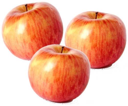 manzanas fuji preciosas
