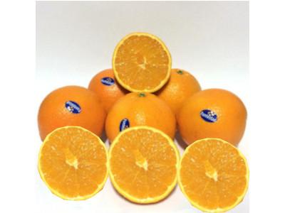 naranjas fontestad enteras y naranja fntestad partida a la mitad pudiendo ver su interior