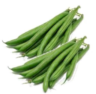 judias verdes redondas bobby