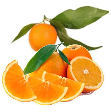 naranjas hoja de gran calidad y naranja hoja cortada a la mitad y trozos de naranja hoja cortados en gajos