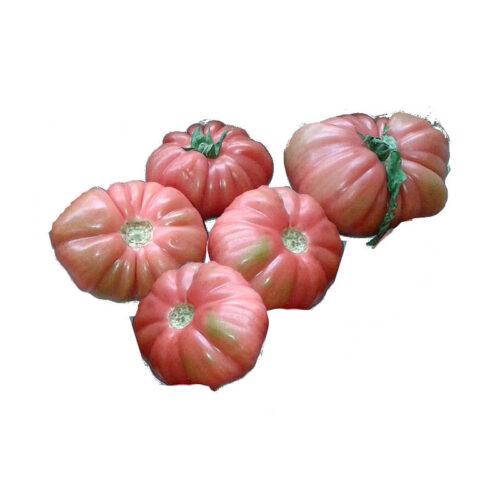 5 tomates muy feos de tudela