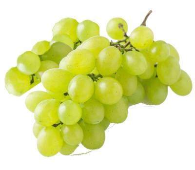 racimo de uva victoria