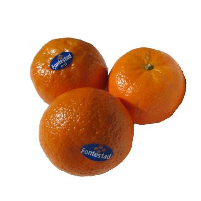 mandarina fontestad tres unidades con pegatina de orri