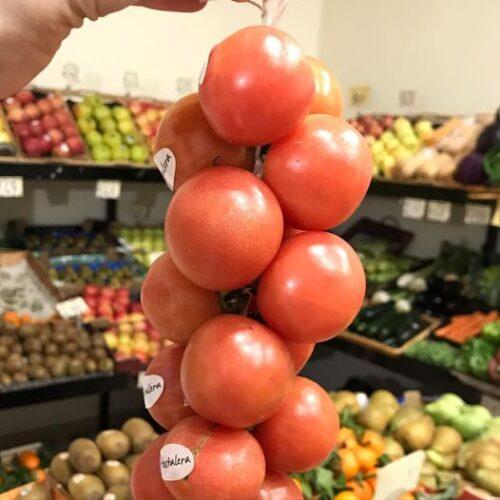 una ristra de tomate de untar en un fruteria