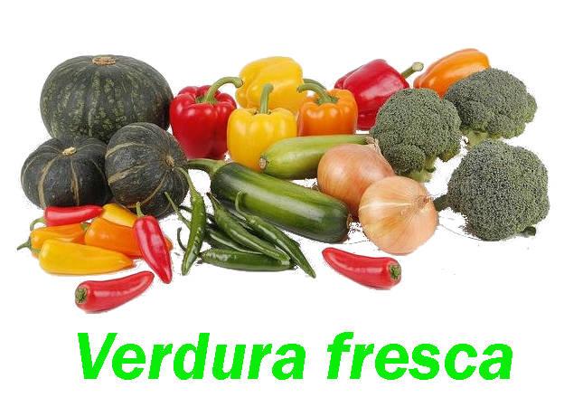 verduras frescas variadas, repollo, pimientos verdes, pimientos rojos judias, pepinos cebollas, brocoli guindillas, calabaza,